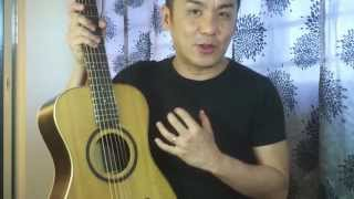Journey Instruments OF420 OverHead Travel Guitar Review in Singapore