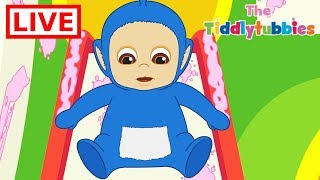 Teletubbies ★ NEW Tiddlytubbies LIVE Cartoons ★ New Cartoons Episodes 1-3 ★ Cartoons for Kids