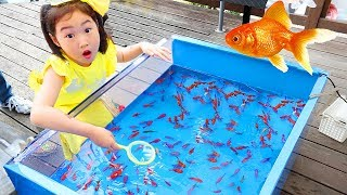 보람이의 핑크퐁 아기상어 낚시놀이 물고기 잡기 Catch Real Fish with Pinkfong Fishing Toys