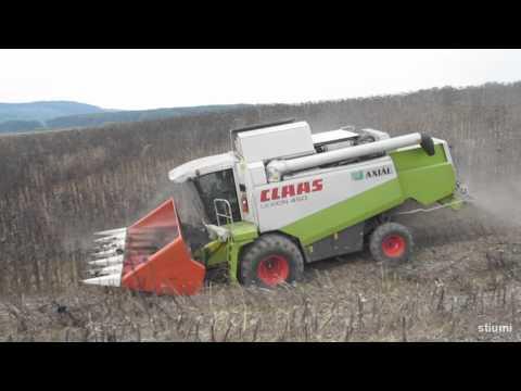 Agroszász Kft. 2010 Napraforgó aratás 2. rész