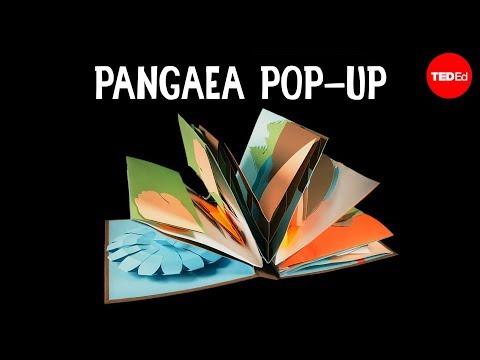 The Pangaea Pop-up - Michael Molina