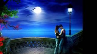 Romantic Song Animated-TeAmo with lyrics HD