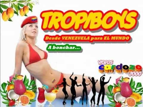 Los Tropiboys de Venezuela Grandes Exitos CD