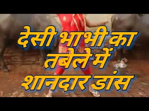 Xxx Mp4 Desi Bhabhi Free Style Dance While Giving Bath To Buffalo देसी भाभी का शानदार डांस 3gp Sex
