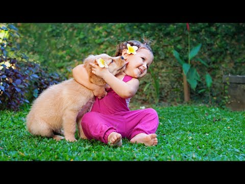 Puppies and Babies Playing Together Compilation 2014