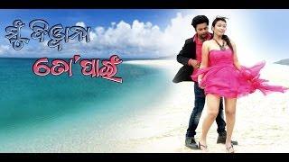 Odia Movie | Mu Diwana To Pain | Ki Jadukarichu | Bulu | Jyoti Pani | Latest Odia Songs