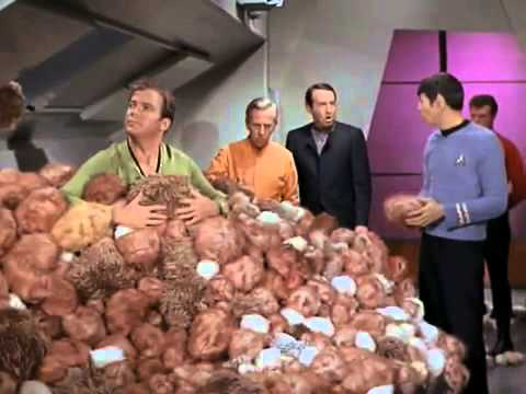 Star Trek The Trouble With Tribbles Clip