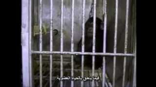Earthling(Arabic subtitles)-سكان الأرض وثائقي عن قضية الحيوان