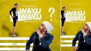 Kava la wimbo mpya wa Dogo Janja 'Wayu Wayu' lazua utata