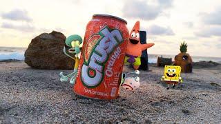 SpongeBob in real life 20