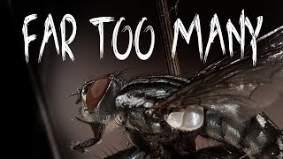 """""""Too Many Flies"""" by UnsettlingStories 