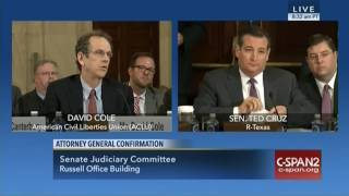 Ted Cruz Grills ACLU Prof Over Incomplete Sessions Testimony