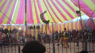 Bangladeshi Circus