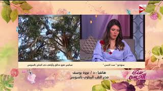 ست الحسن - مداخلة د.عزيزة يوسف تعقيباً على خبر غزو النسانيس لحدائق وجناين السويس