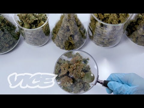 What's Really in Your Weed?
