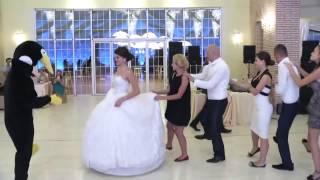 اجمل رقصه في العالم رقصة البطريق في عرس الباني جديد