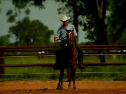Record Rural Conheça uma nova forma de doma de cavalo
