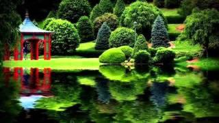 RINDANG TAK BERBUAH ( LIRIK )--   KIREY   ( BY THEASTY)