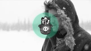 MIXTAPE PalmTherapy x Adrian Ström /INTO the WILD/