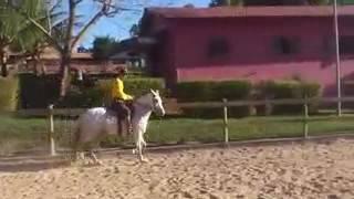 aprendendo a cavalgar (emanoel)