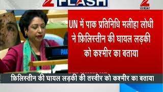 Pakistan fails to defame India at UN | भारत को बदनाम करने की पाकिस्तान की कोशिश नाकाम