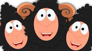 Baa Baa Black Sheep Nursery Rhymes For Kids Preschool Rhyme kids tv S02 EP067