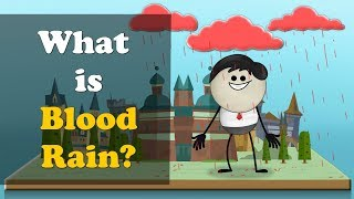What is Blood Rain? | #aumsum #kids #education