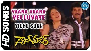 Vaana Vaana Velluvaye Video Song - Gang Leader Movie | Chiranjeevi | Vijayashanti | Bappi Lahiri