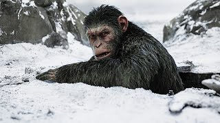 Movie Review - WAR FOR THE PLANET OF THE APES (2017)