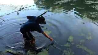 Ninja Mike (1Rod1ReelFishing): Retrieving the Frog Lure at Lake Alverthorpe (TTYDSWYSAH)