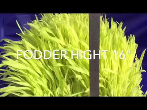 Hydroponic technology