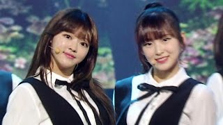 《Comeback Special》 Oh My Girl(오마이걸) - One Step, Two Steps(한 발짝 두 발짝) @인기가요 Inkigayo 20160508