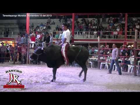 RANCHO JR EN TENEXTEPANGO MORELOS EXELENTE JUGADA CON 5 TOROS Y 5 mas de Rcho. La Hacienda