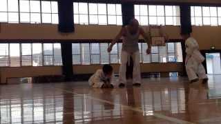 Sensei Nishimura's Karate Class - A Fun Collaboration