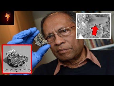Xxx Mp4 Alien Life Form Discovered Within Sri Lankan Meteorite 3gp Sex