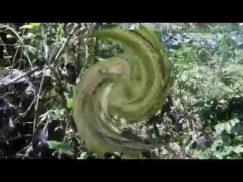 Air Terjun Kecamatan Bubulan - Bojonegoro