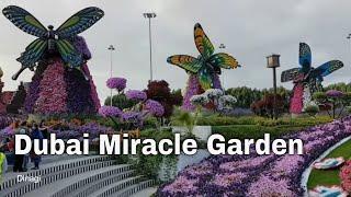 Dubai Miracle Garden 2017