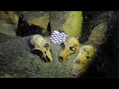 7 Mysterious & Amazing Underwater Discoveries of 2015