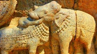 A Strange 8 Legged Animal Found in India? Optical Illusion at Darasuram