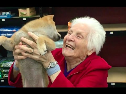 GRANDMA'S FIRST TRIP TO THE PET STORE   Ross Smith