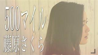 500マイル/藤原さくら 『ラブソング』挿入歌- 忌野清志郎(Cover by コバソロ & 安果音)