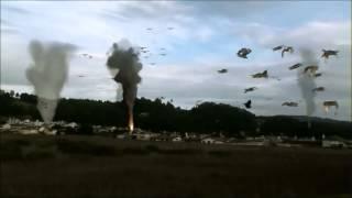 Birdemic - Shock and Terror: bird scene