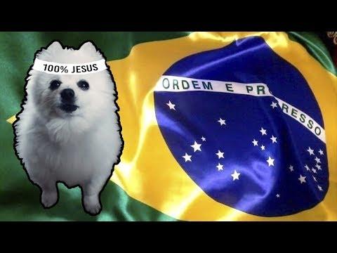 HINO NACIONAL do BRASIL em CACHORRÊS
