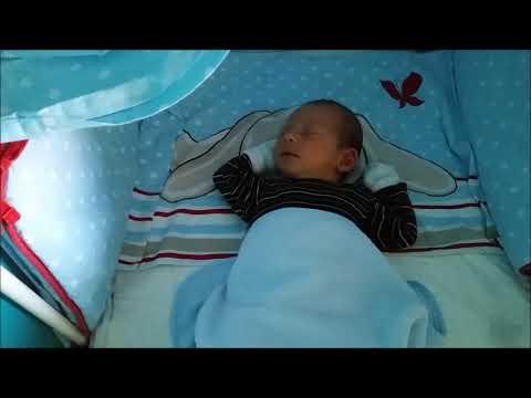 Vlog 2în1: 28 și 29 august 2017 - Zile lungi