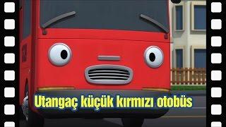 📽Utangaç küçük kırmızı otobüs l Tayo tema tiyatrosu #13 l KÜÇÜK OTOBÜS TAYO