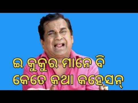 Brahmanandam comedy || brahmanandam Odia Sambalpuri comedy