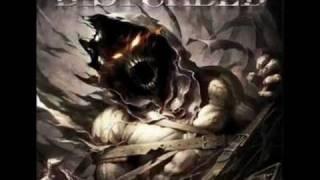 Disturbed - Rise Lyrics