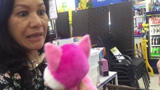 Is it possible to get over the fear of Cats?  PRANKING MUM! BUYING KITTENS!