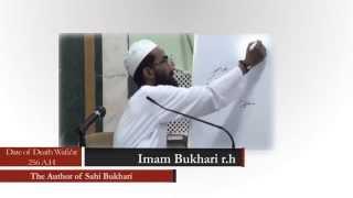 Namaz mein Imam ke peechey Qirat na karna | Abu Zaid Zameeer ko Mukhtasar Jawab HD