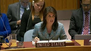 UN Security Council Meeting on the Ceasefire in Syria